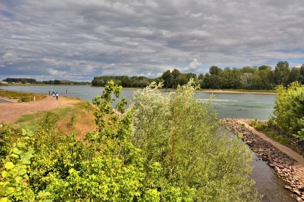Speyer Rheinufer